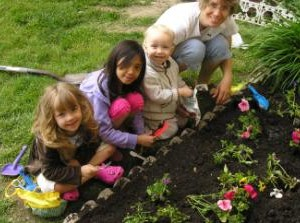 Allotment Gardening ?Can Boost Mental Well-Being?- Says Study