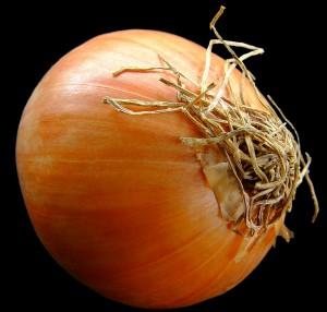 onion-1328566-1919x1832