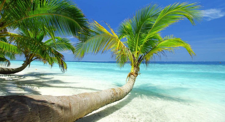 Caribbean Island – 5 Top Places to Visit